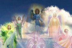 angelique és visszér