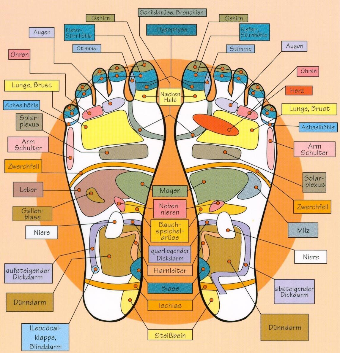 hol kezdődik a varikózis a lábakon)