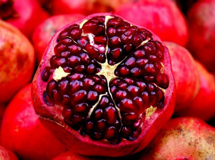 Ádám alma a visszér kezelésére szolgál)