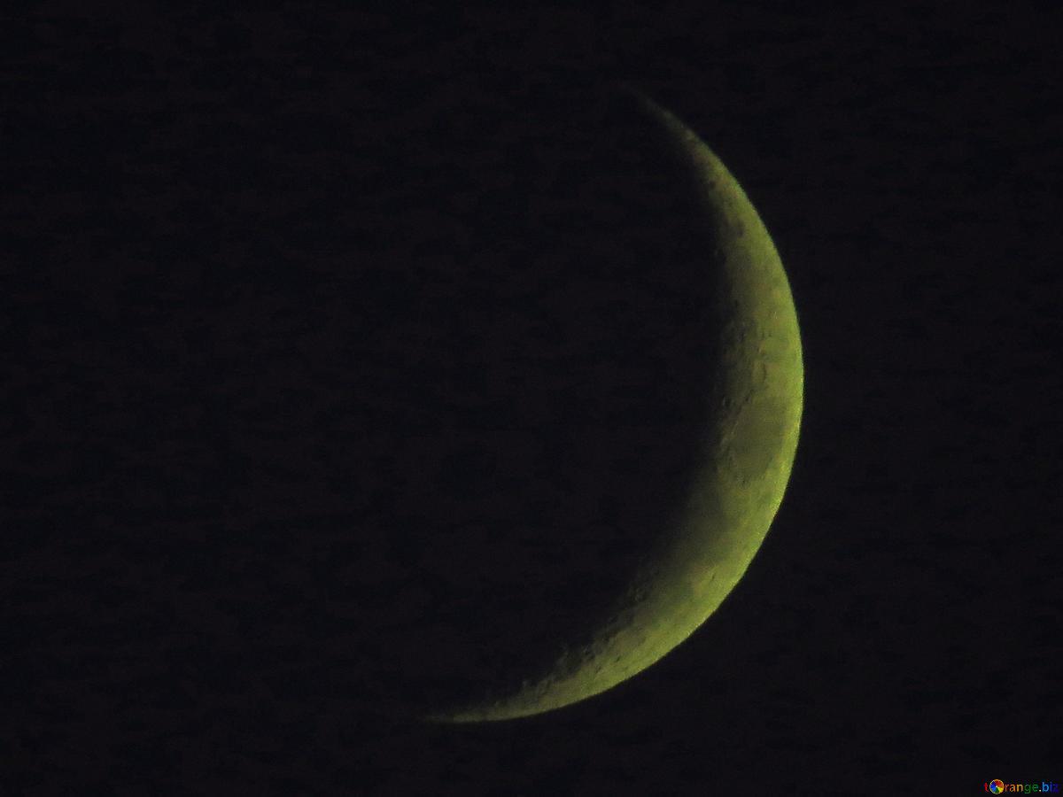 hold és visszér
