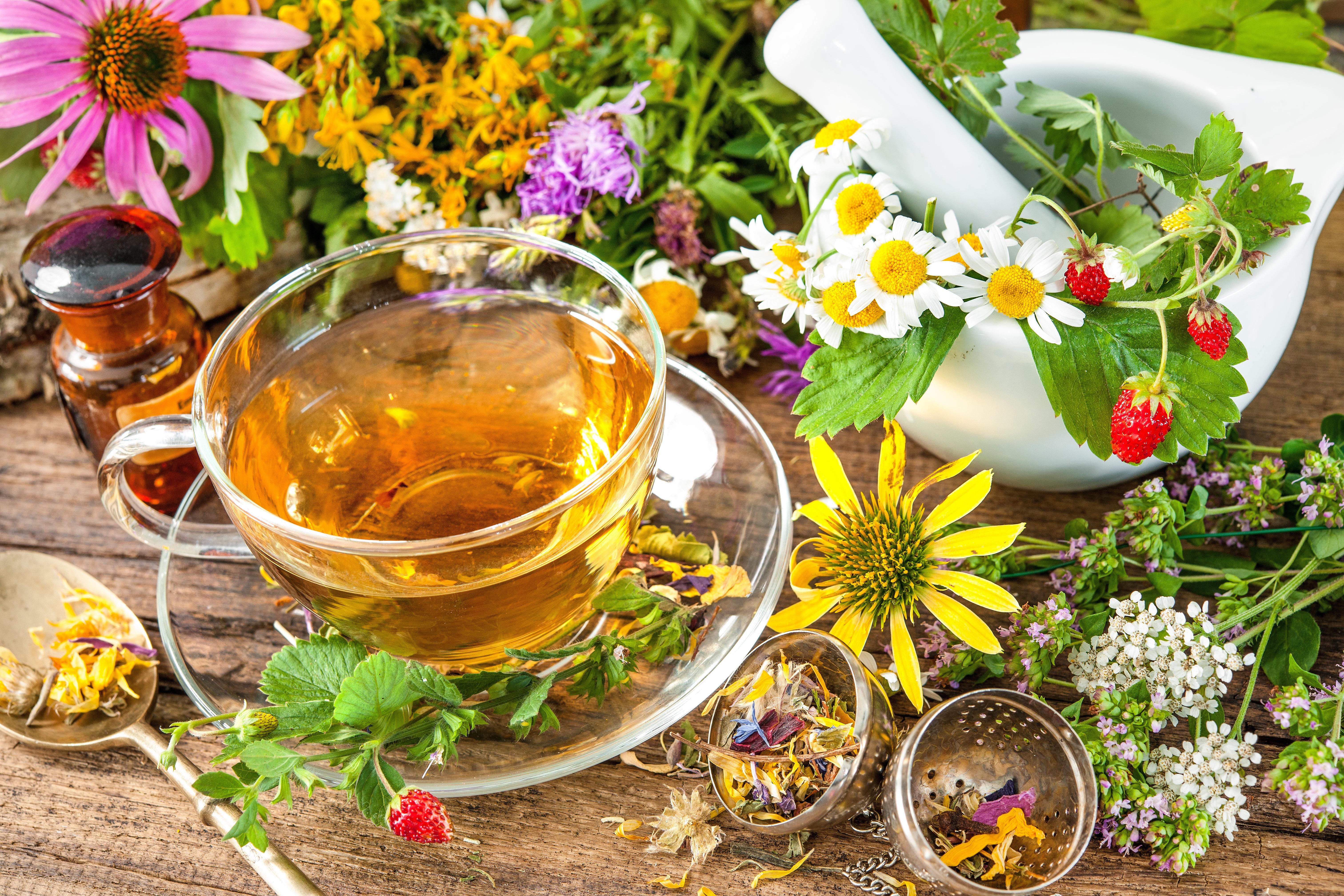 Gyógynövények | Nimród Mohács