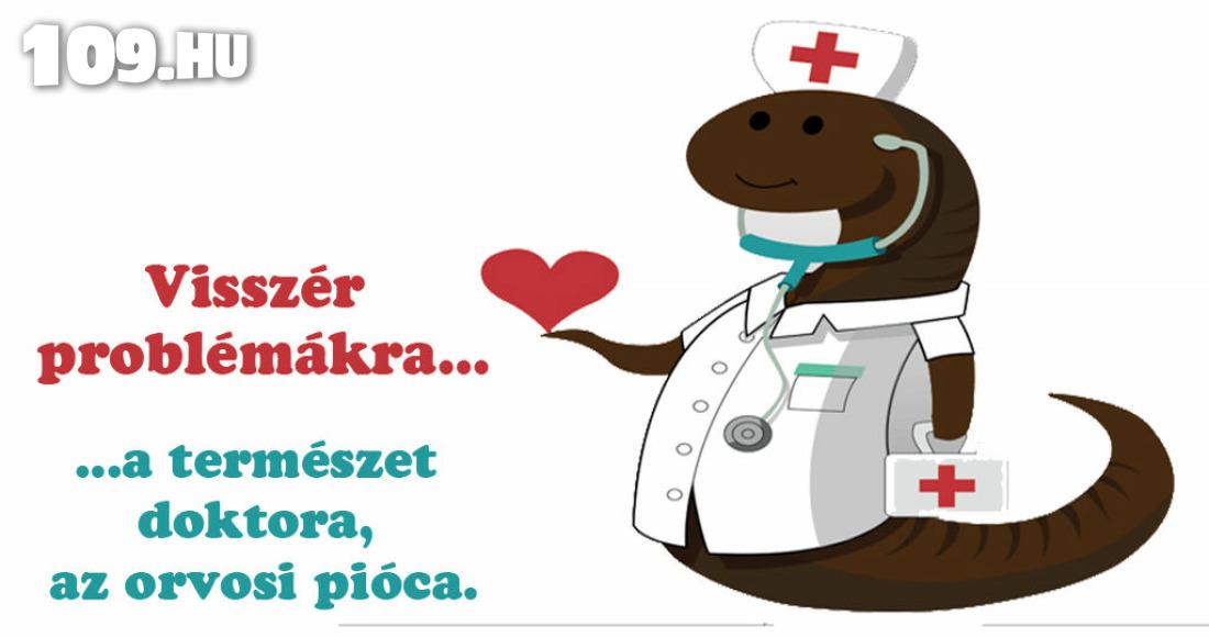 piócák és a visszér kezelése)
